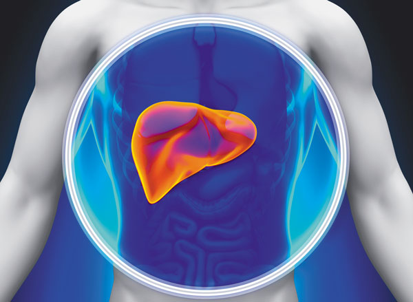 fatty liver disease and your heart