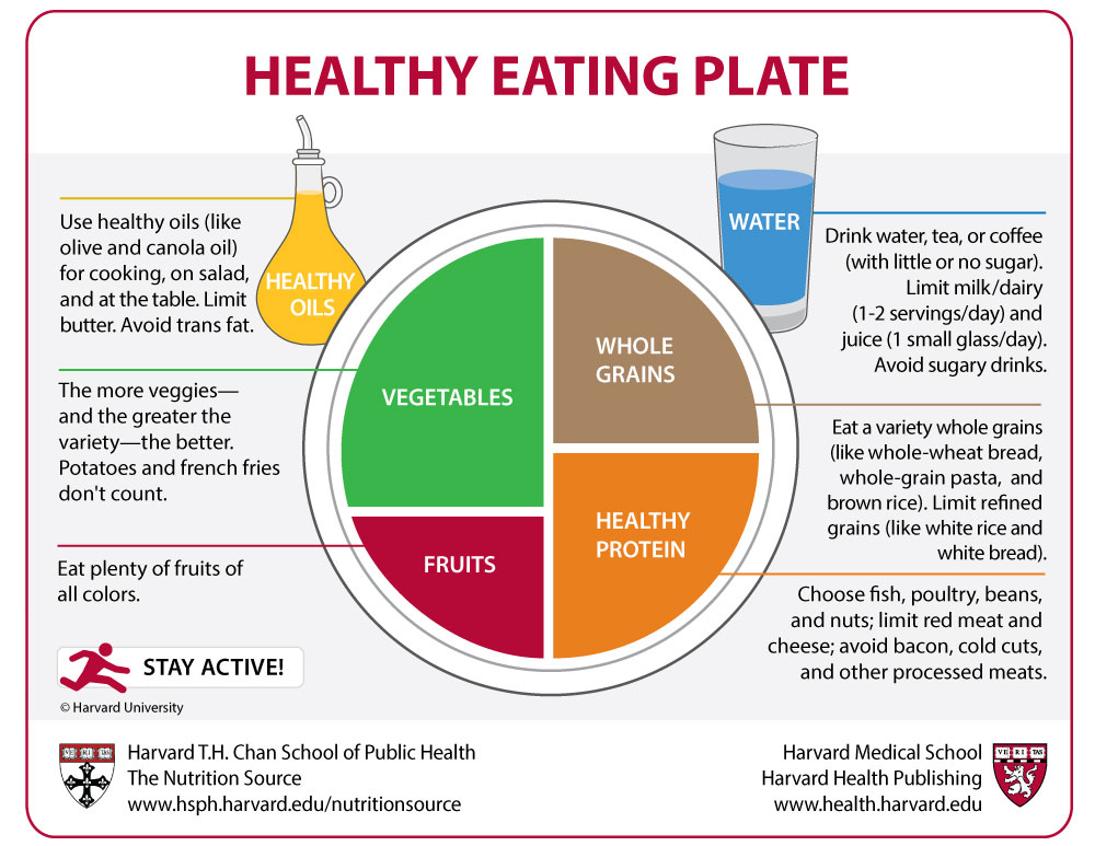 Comparison of the Healthy Eating Plate and the USDA's