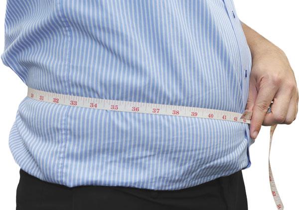 bmi body fat percentage