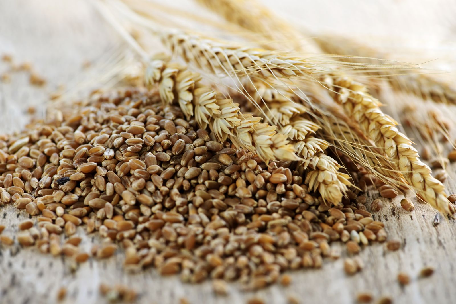 reaping gains from grains harvard health