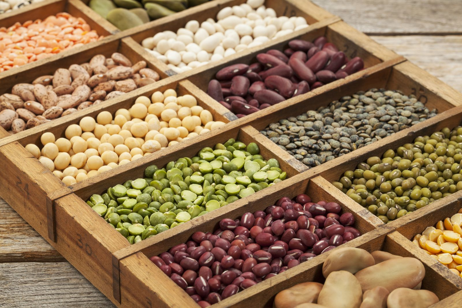 Plant-based diet: Nuts, seeds, and legumes can help get ...
