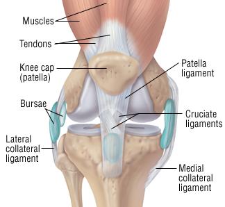Knee sprain harvard health knee sprain ccuart Image collections