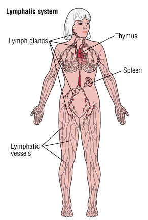 Lymphedema - Harvard Health