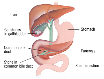 heart attack symptoms in tamil pdf