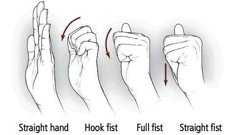 Hand/finger tendon glide exercise