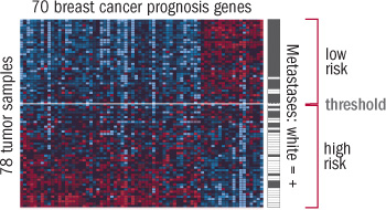 image of gene expression pattern data from a breast cancer test