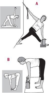illustration of Iyengar yoga poses