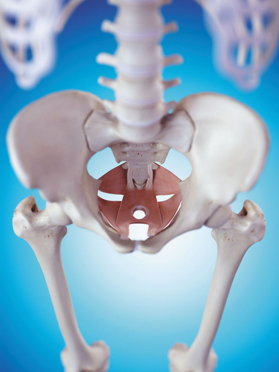 Pelvic physical therapy: Another potential treatment option