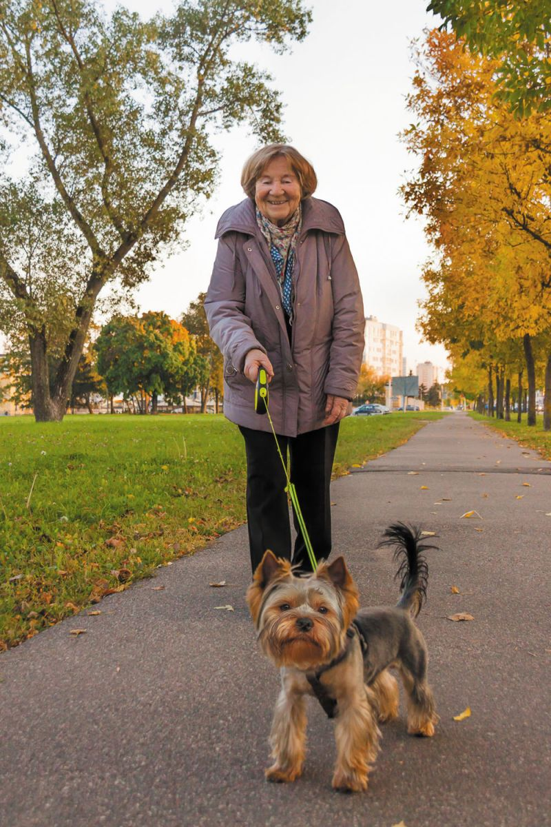 Dog owners: Less heart disease and longer life?