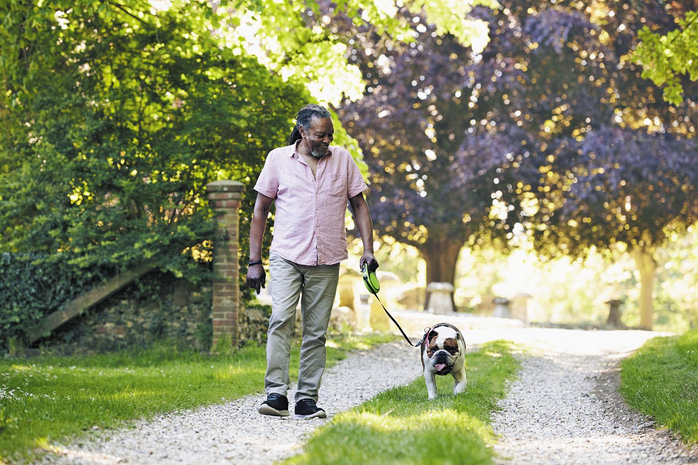 Walk your dog, break a bone? - Harvard Health