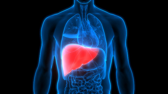 Weight loss can help head off lasting damage caused by fatty liver featured image