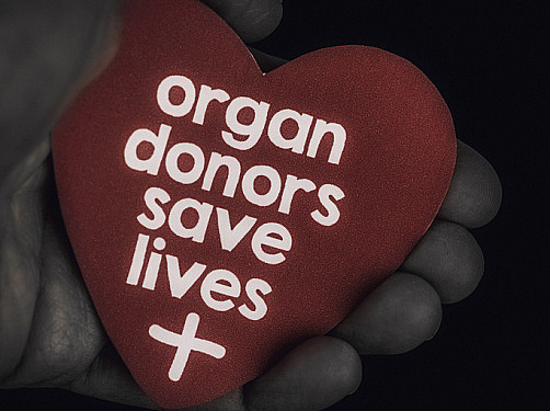 Flowers, chocolates, organ donation — are you in? featured image