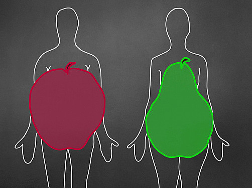 The link between abdominal fat and death: What is the shape of health? featured image