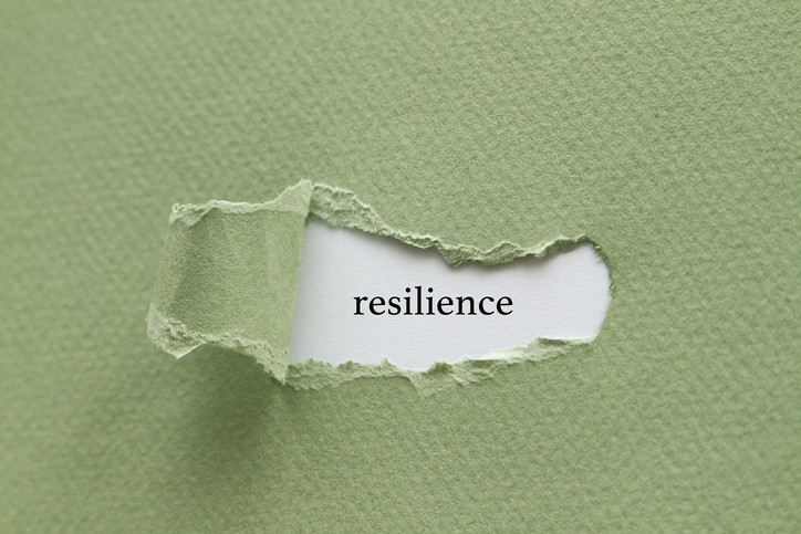 Seeking solace, finding resilience in a pandemic