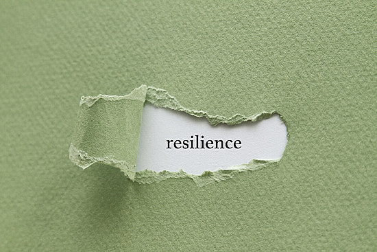 Seeking solace, finding resilience in a pandemic featured image