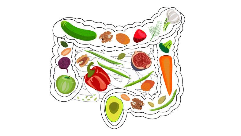 healthy-diet-healthy-gut