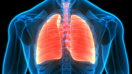 Proposed guidelines likely to identify more early lung cancers featured image