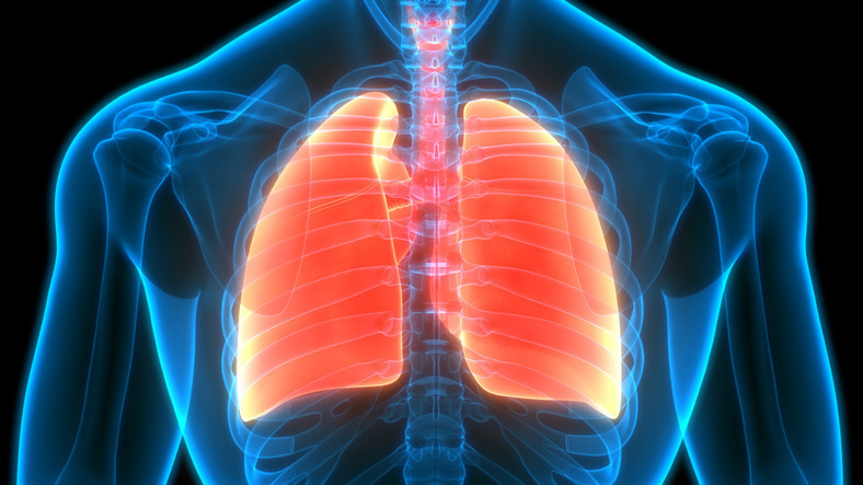 Proposed guidelines likely to identify more early lung cancers