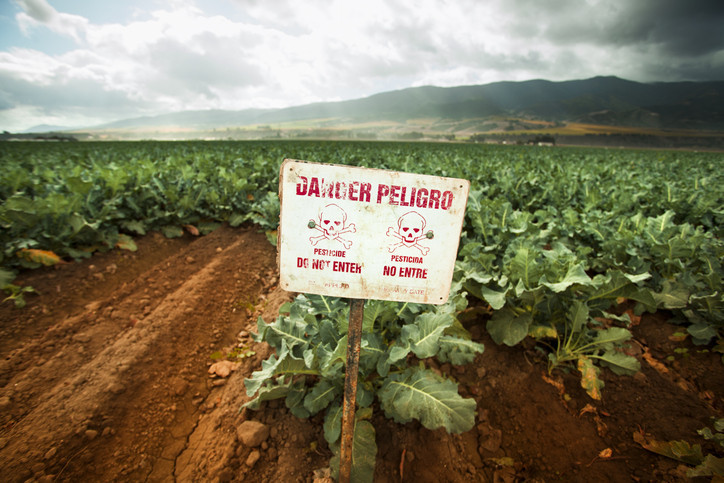 Ban on harmful pesticide: What parents need to know