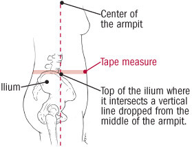 illustration of how to measure waist