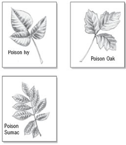 Know your poisons
