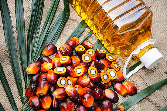By the way, doctor: Is palm oil good for you? featured image
