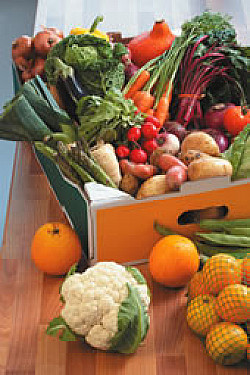 News briefs: Fruits and veggies: Quantity trumps variety, say Harvard researchers featured image