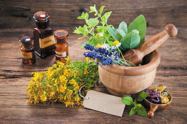 herbs-supplements-vitamins