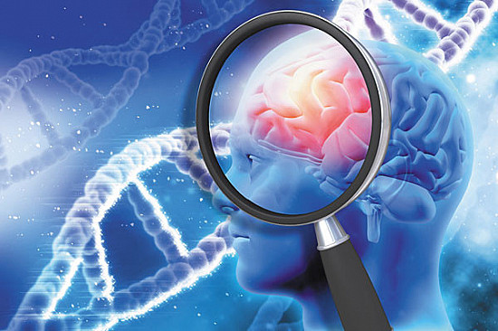 The genetic link between Alzheimer's and heart disease featured image