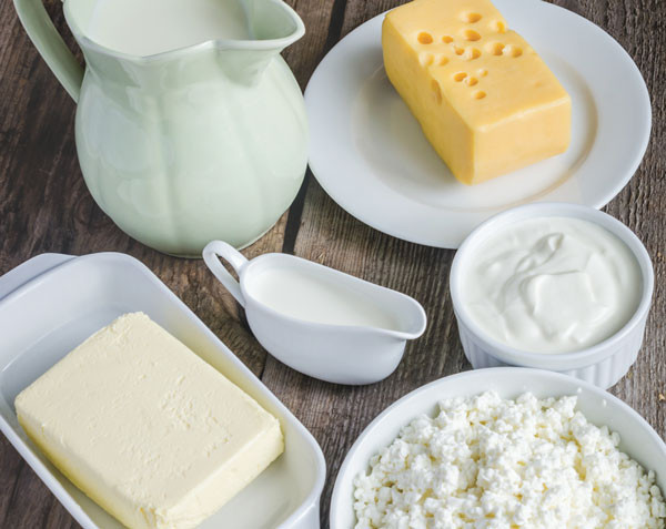 dairy cheese products