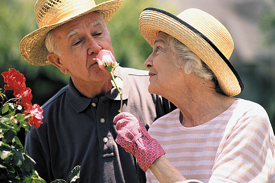 Trouble identifying odors may be an early sign of dementia featured image