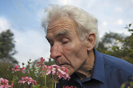 Poor sense of smell may predict risk of death in older adults featured image