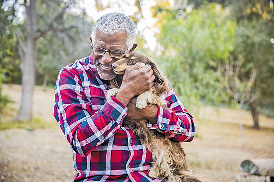 Why dog owners seem to have healthy hearts featured image