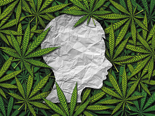 Marijuana use linked to higher risk of stroke in younger adults featured image
