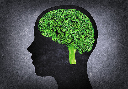 The thinking on flavonoids featured image