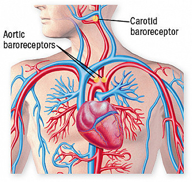 An unexpected benefit of better blood pressure control? featured image