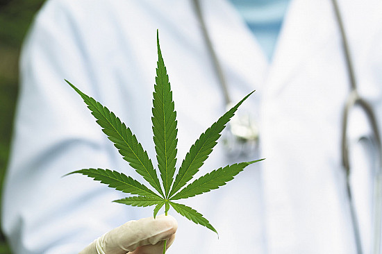 The highs and lows of medical cannabis featured image
