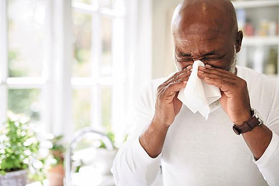 'Tis the (allergy) season featured image