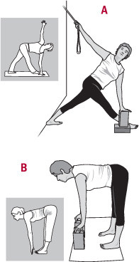 Iyengar yoga poses
