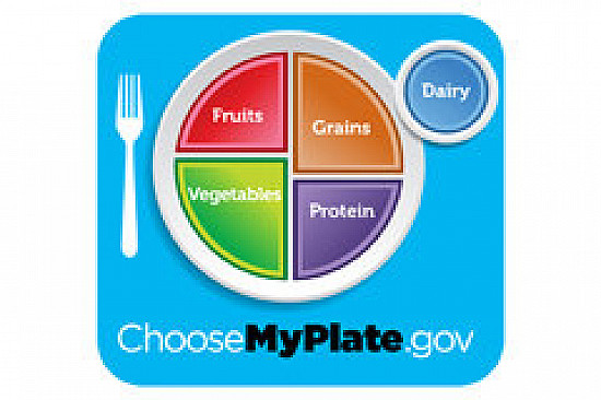 Crumbling, confusing Food Pyramid replaced by a Plate featured image