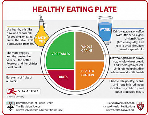 Harvard to USDA: Check out the Healthy Eating Plate featured image