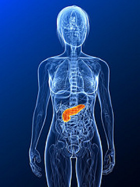 $2 drug treatment helps prevent exam-caused pancreas problem featured image