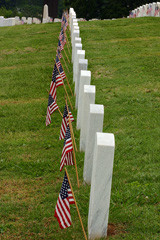 Memorial-Day-flags-and-tombstones