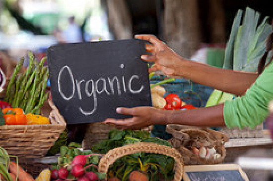 Organic food no more nutritious than conventionally grown food featured image