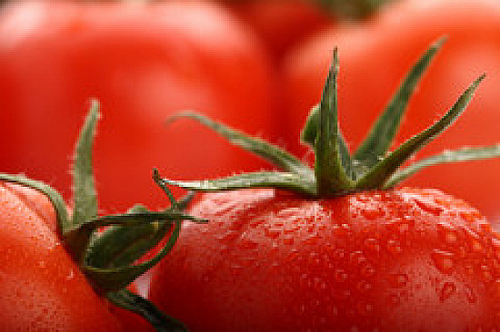 Lycopene-rich tomatoes linked to lower stroke risk featured image