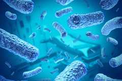 Bacteria-in-the-bloodstream