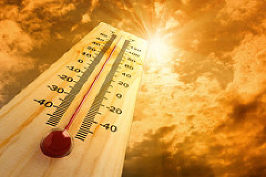 Fluids, cool air key to avoiding heat stroke featured image