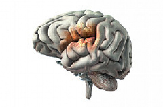 Ultra-rapid treatment reduces odds of post-stroke disability featured image