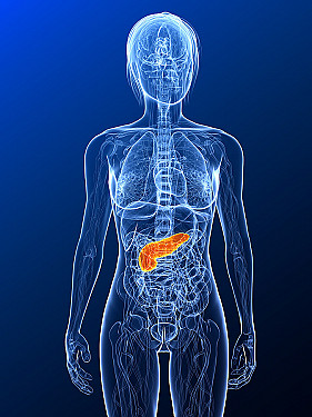 """""""Bionic pancreas"""" could help people with type 1 diabetes control blood sugar featured image"""