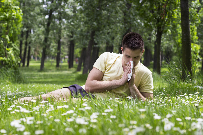 allergy-grass-pollen-allergies-hay-fever